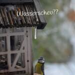 wasserscheu